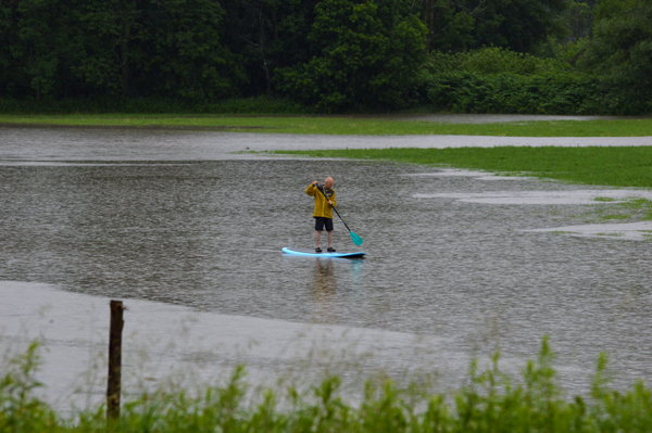 A lone paddleboarder takes advantage of flooded fields from the July 1 rains. Photo: Chris Keating