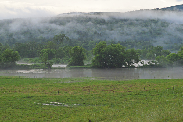 Recent heavy rains have flooded many farm fields. Photo: Chris Keating