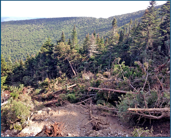 A large mudslide swept down the Slide Brook area on August 24. It  started 200 feet below the Long Trail near Cutts Peak. Above, a jumble of broken trees near the bottom of the slide can be seen. Below, the slide is visible from Rolston and East Warren roads on the Green Mountains between Lincoln Peak and Mt. Ellen. Photos: Peter Stevenson