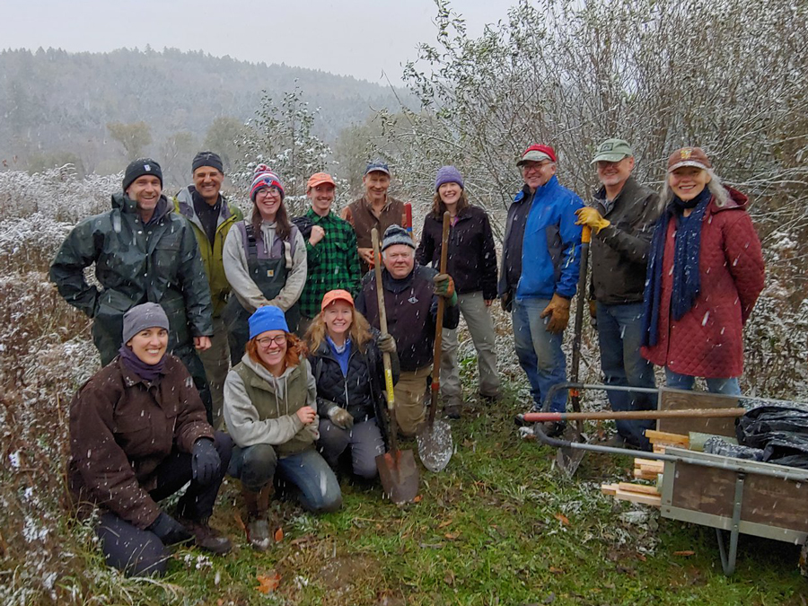 Volunteer tree planters. Photo: Corrie Miller