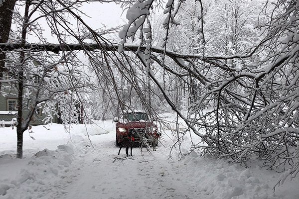 A November 27 storm dropped 2 feet of wet, heavy snow on The Valley toppling trees and knocking out power