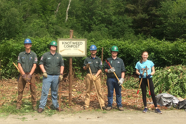 The Vermont Youth Conservation Corps camped in The Valley while working to help eradicate knotweed. At the Sugarbush snowmaking pond they separated knotweed roots from tops at a knotweed dump.
