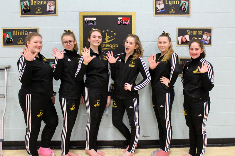 The Harwood gymnastics team took fifth place at the VT State High School Gymnastics Championships on February 15. From left to right: Sieanna Forkey, Hannah Ladieu, Delana Cheney, Lynn Russell, Alyson Bryant and Olivia Bloom.