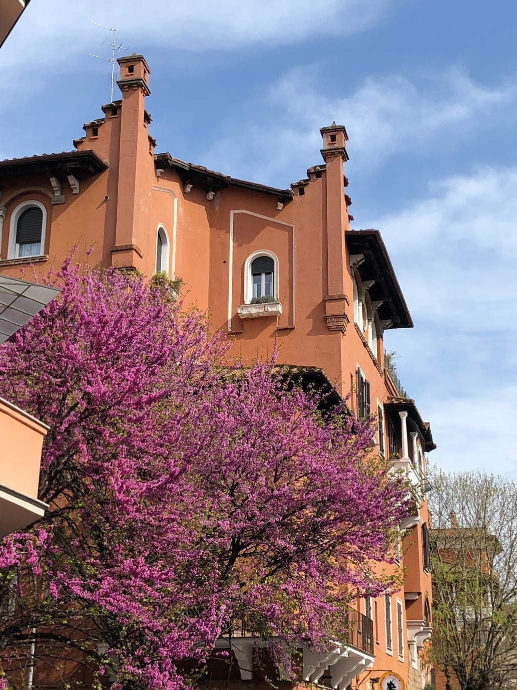 Spring's purple blooms ignore coronavirus as they offset Garbatella's iconic architecture.